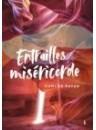 """""""Entrailles de miséricorde"""" par Carlos Payan"""