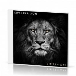"""""""Love is a Lion"""" par Citizen Way"""