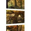 """""""Set de trois cartes au format A6"""" par Alain Auderset"""